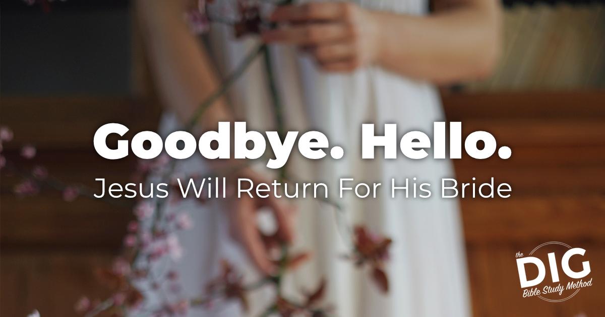 Goodbye. Hello. Jesus will return for His Bride Sermon. John 14 and Revelation 19.